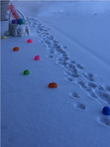 Easter Bunny tracker trail